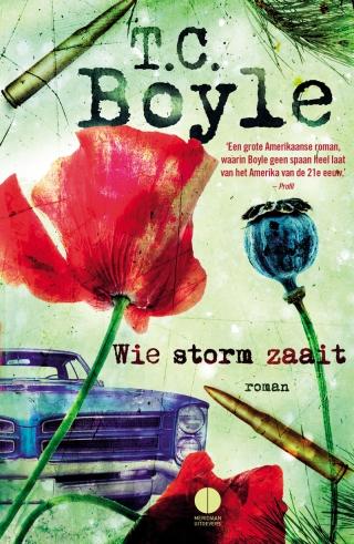 boyle storm